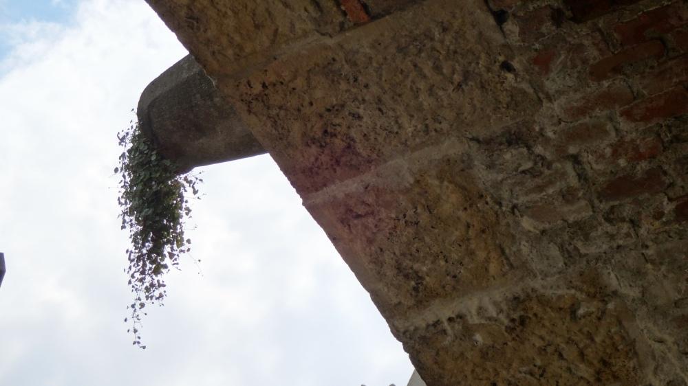 image2(1)